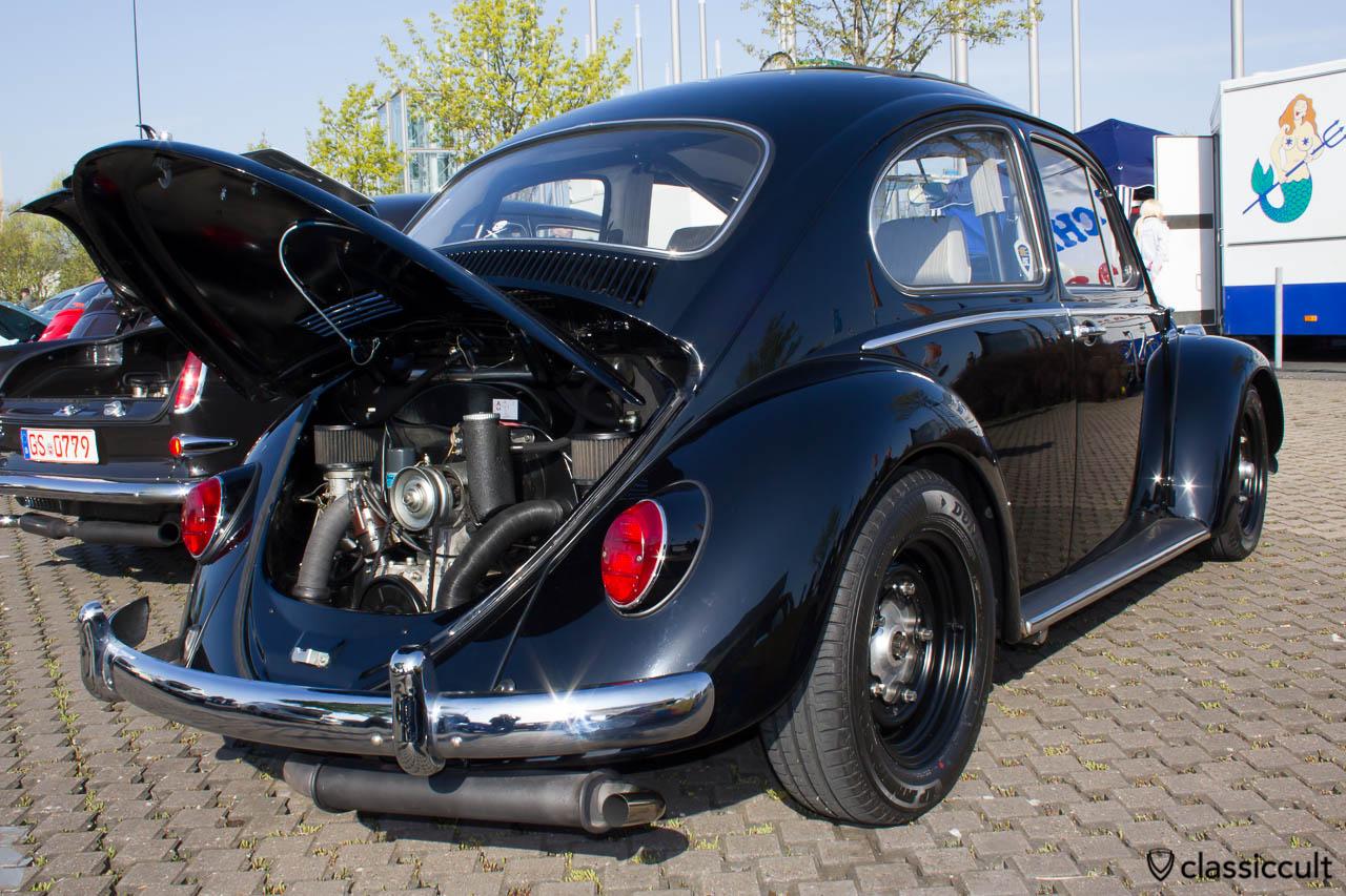 schwarzer Käfer mit Power