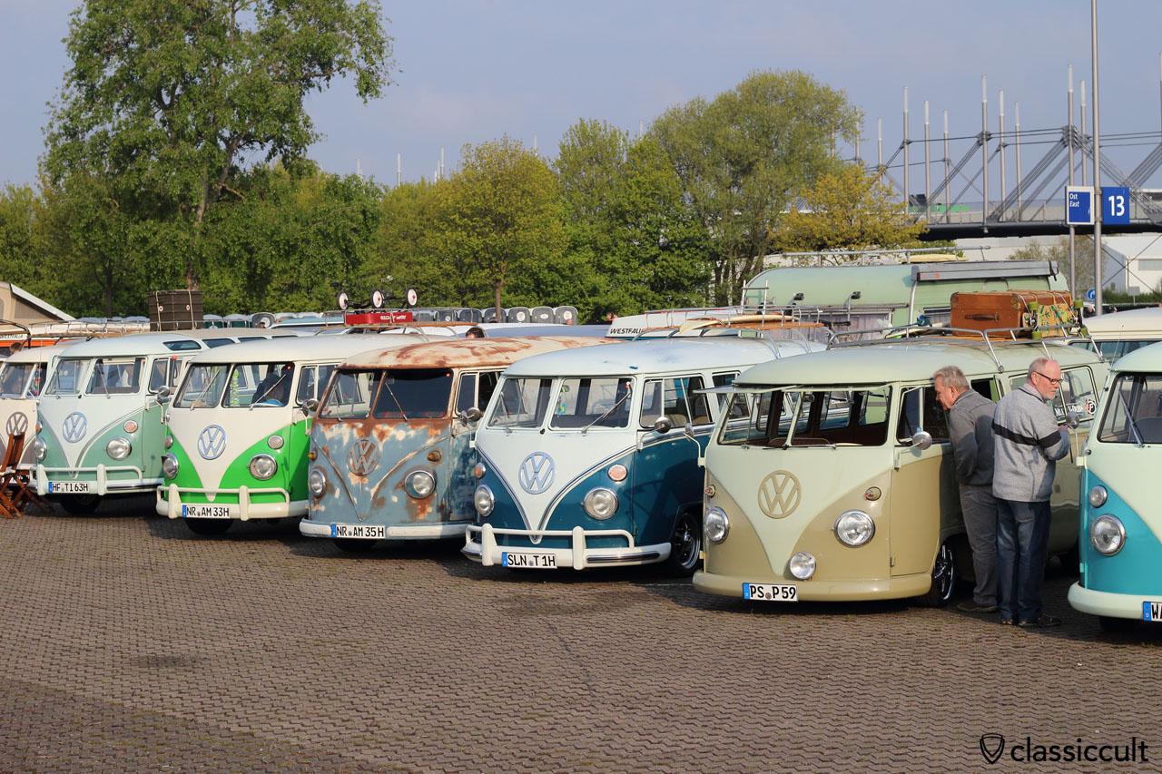 T1 Split Bus line up, Maikaefertreffen Show 2016