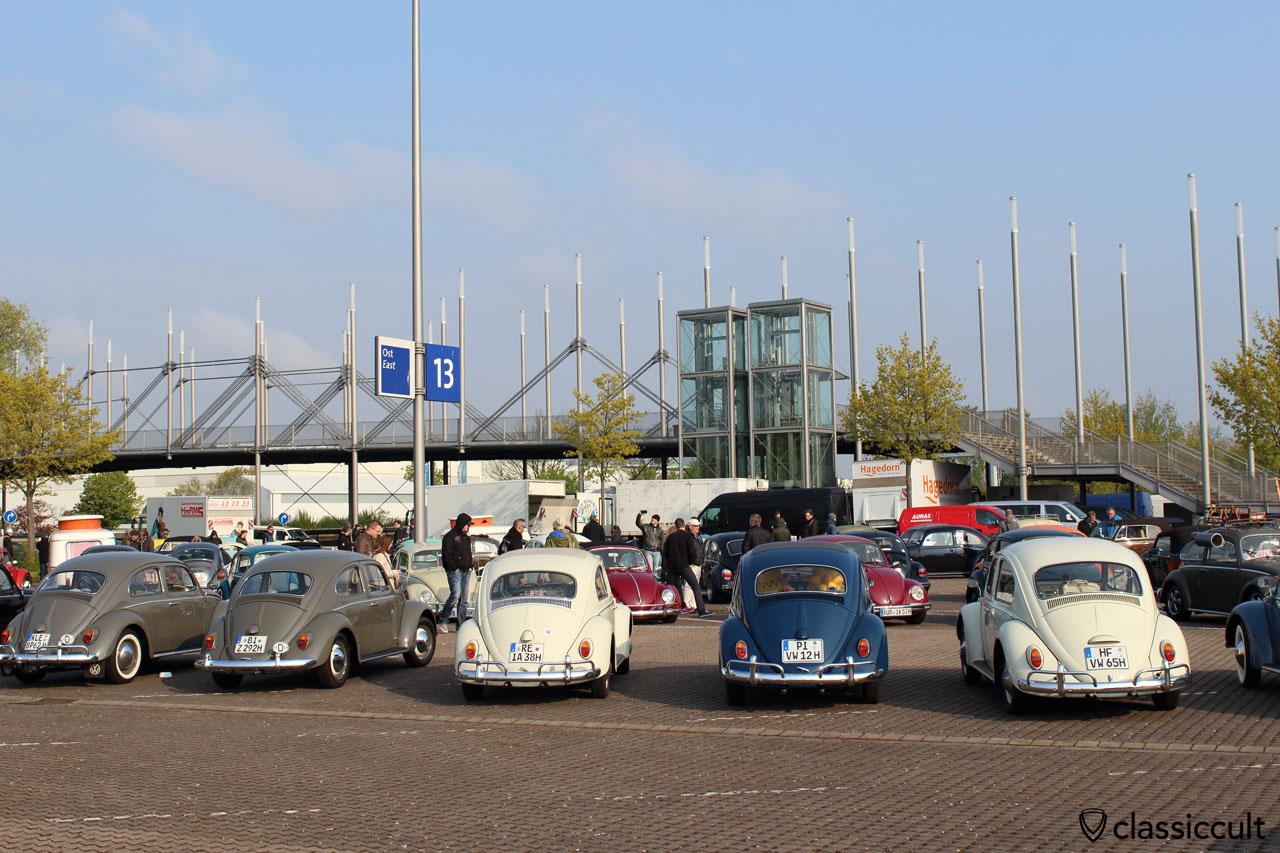 rare these days, original VW Beetles