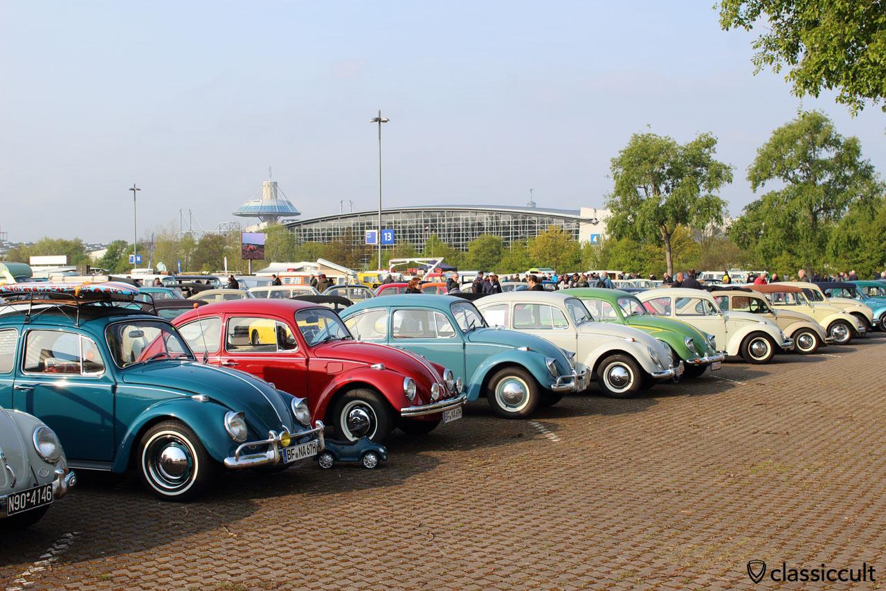 row of original VW Beetles, MKT Show 2016