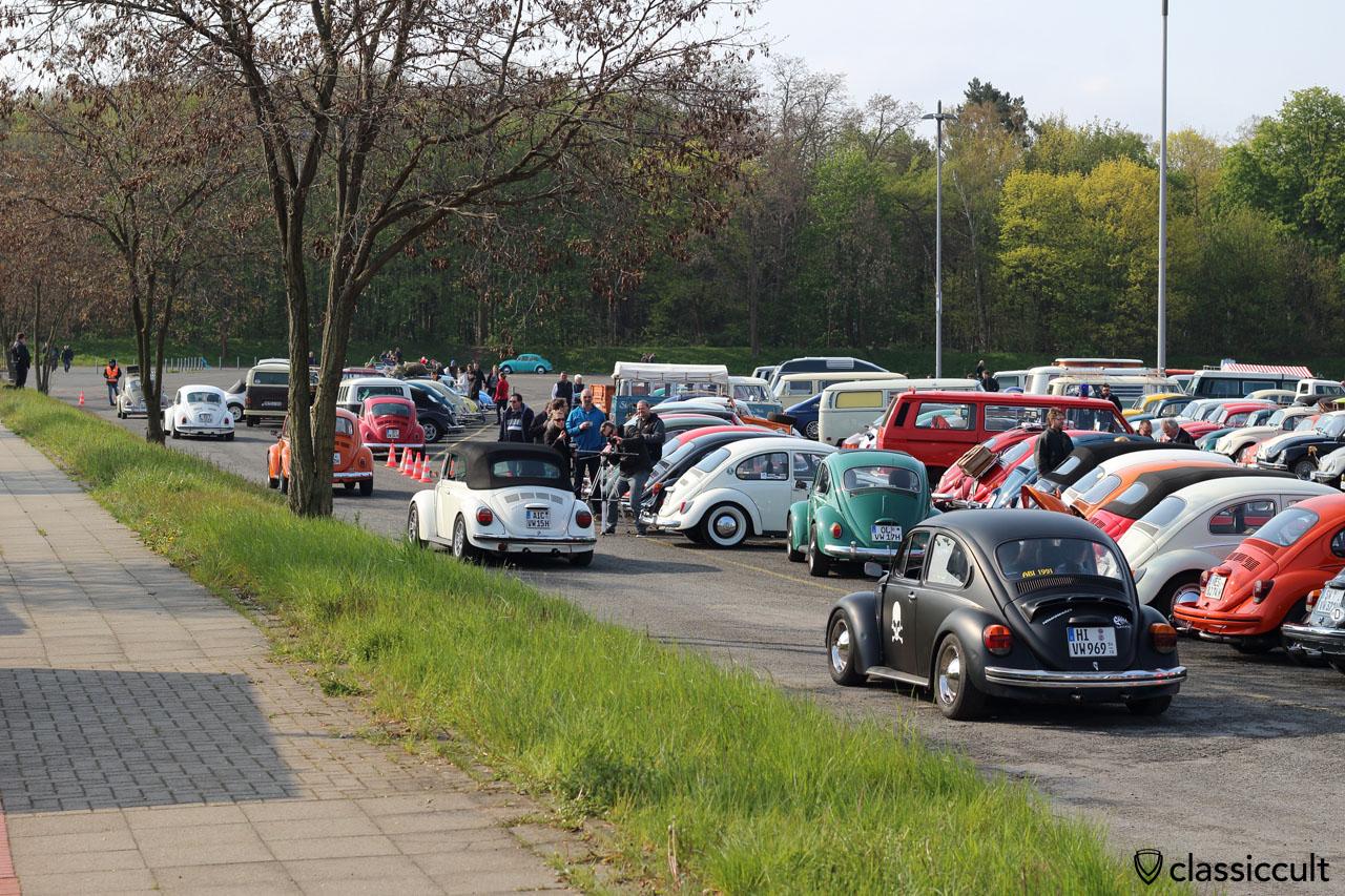 plenty VW Beetle