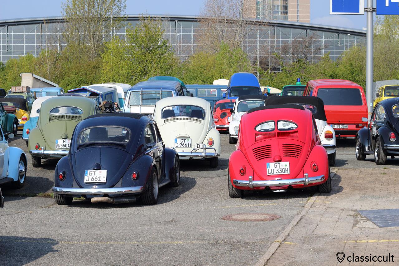Ragtop Beetle from Gütersloh (GT)