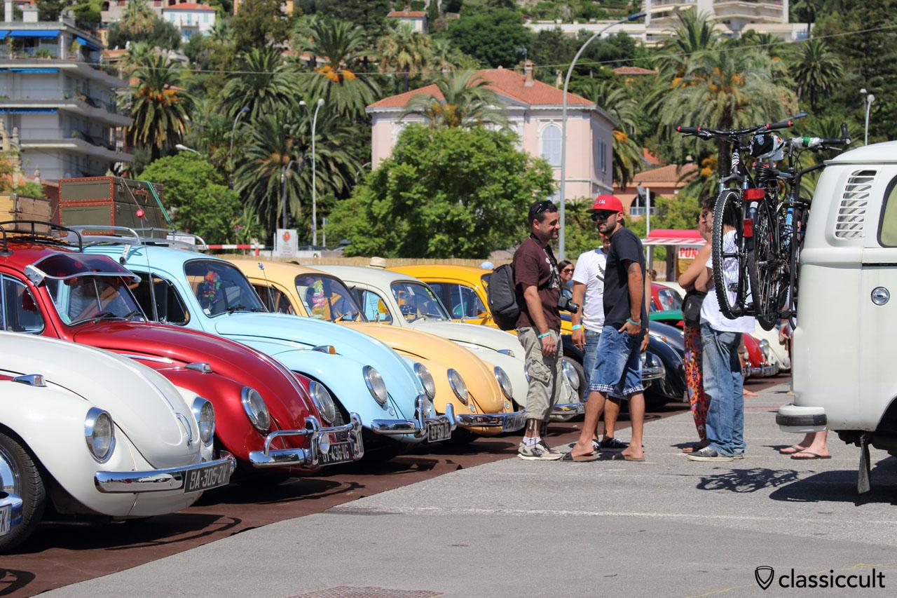 VW Beetle Line Up Menton VW Show 2014