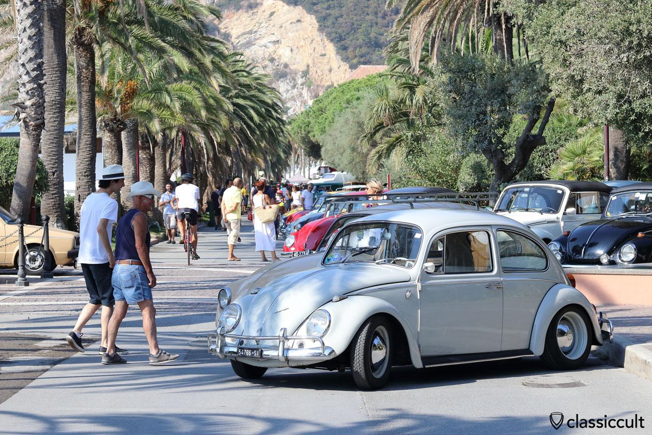 1966 VW Beetle, Show & Shine