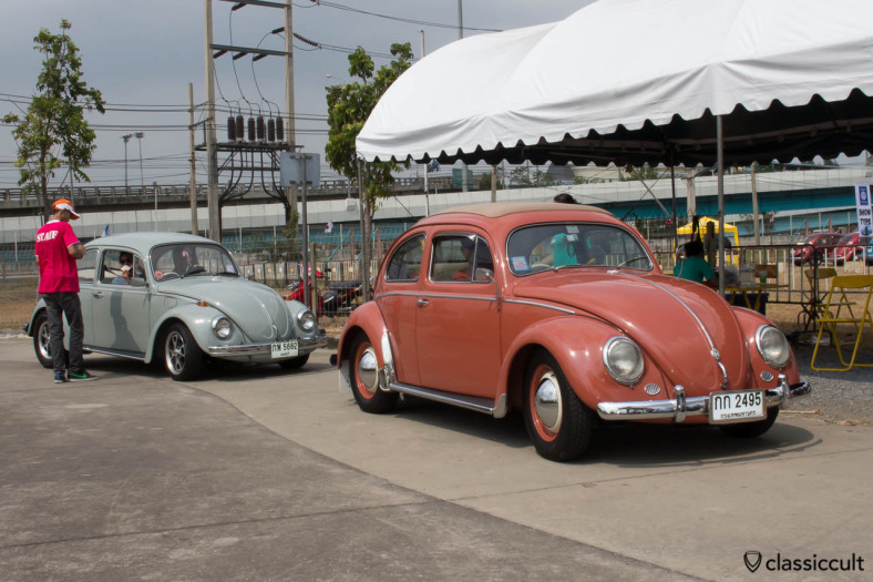 pink Oval Bug front