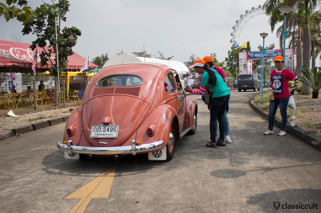 pink Oval Bug rear
