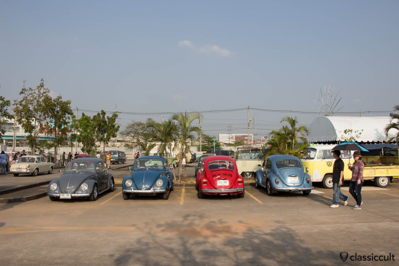 Beetles at Siam VW Show