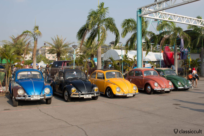 Beetles at Siam VW Festival 2014