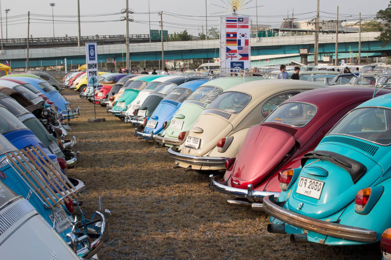 Beetles rear line up
