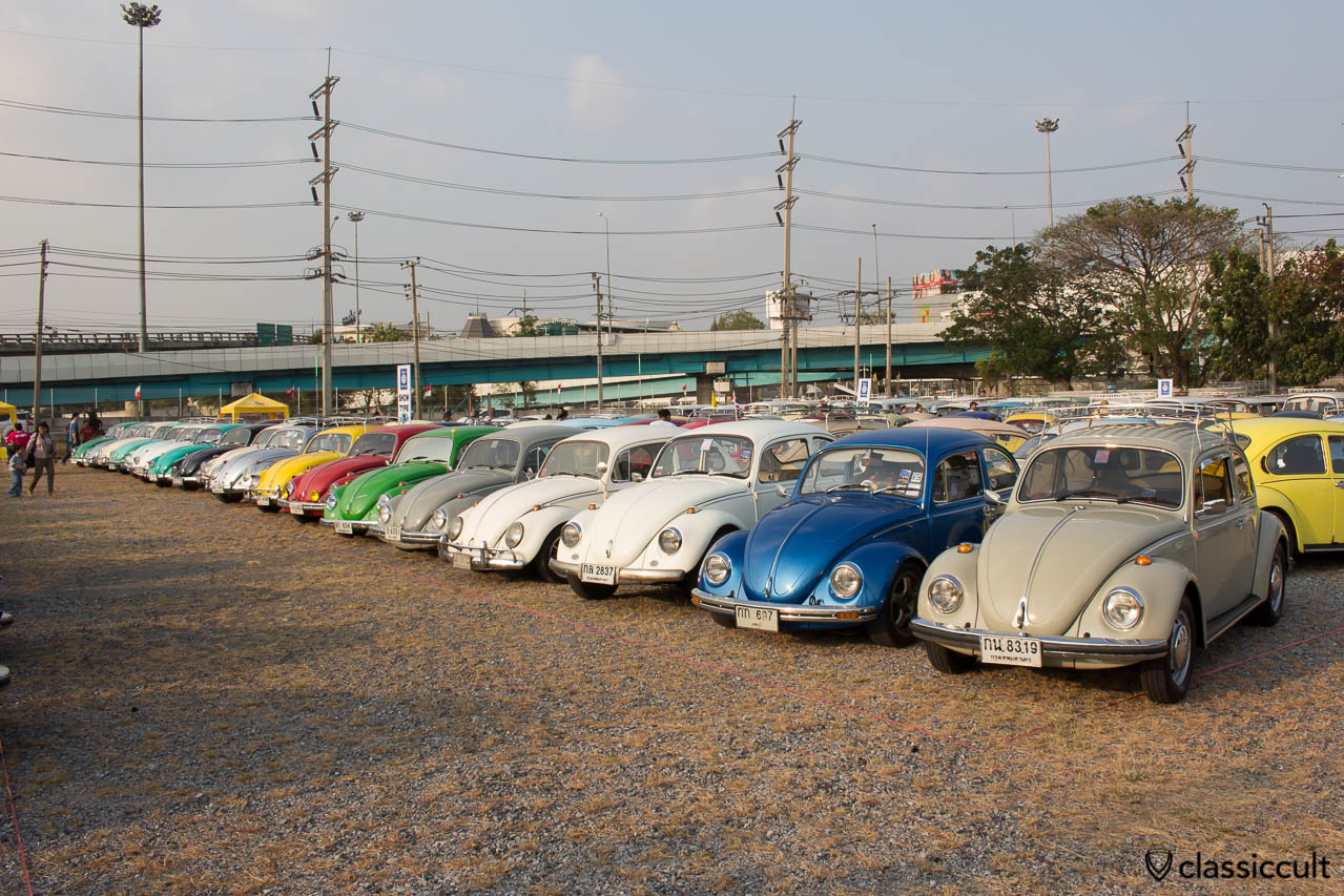 Beetles at Siam VW