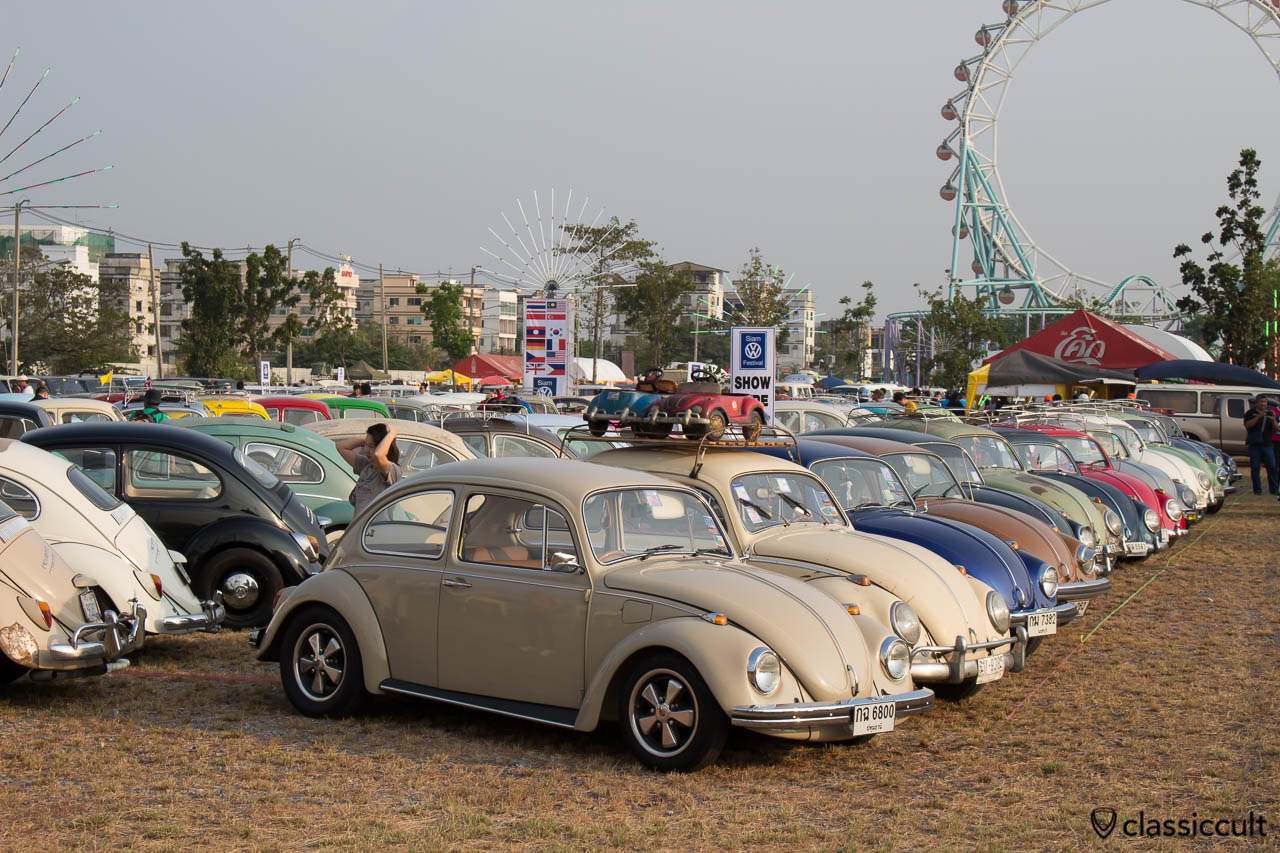 Beetles at Siam Show