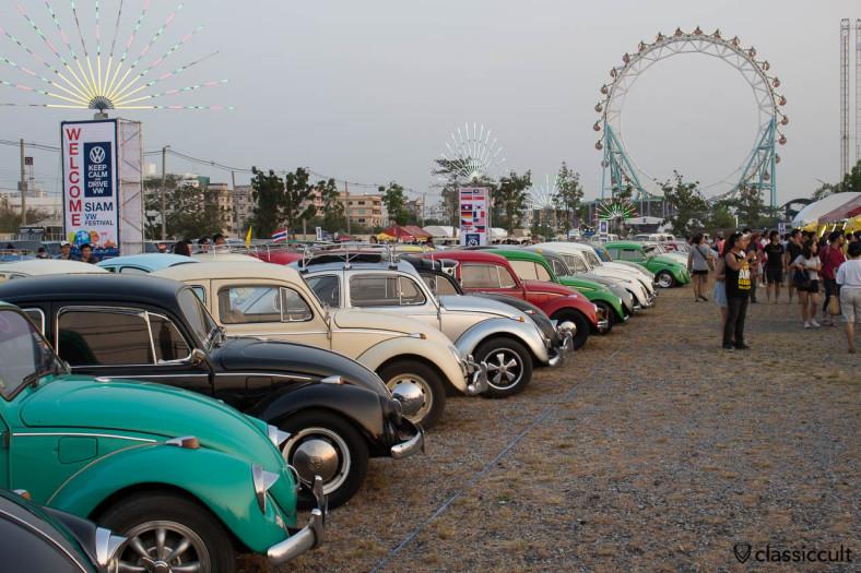 Beetles at Siam VW Festival 2014