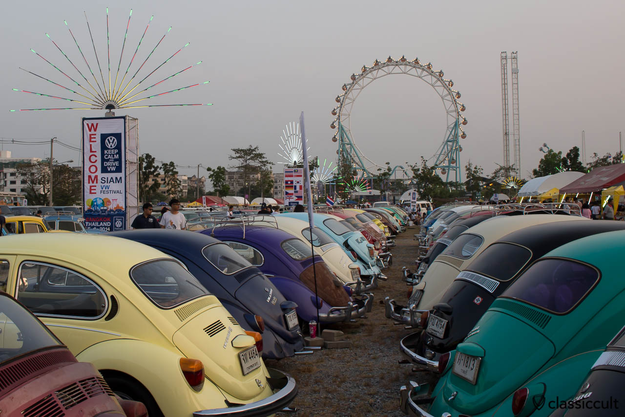 Beetles rear line-up at Siam VW Show 2014