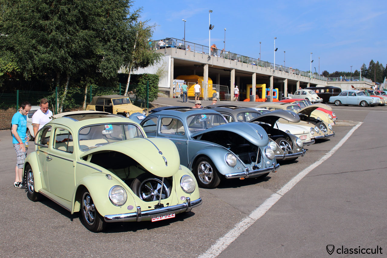 VW Ragtop line up, Spa Bug Show