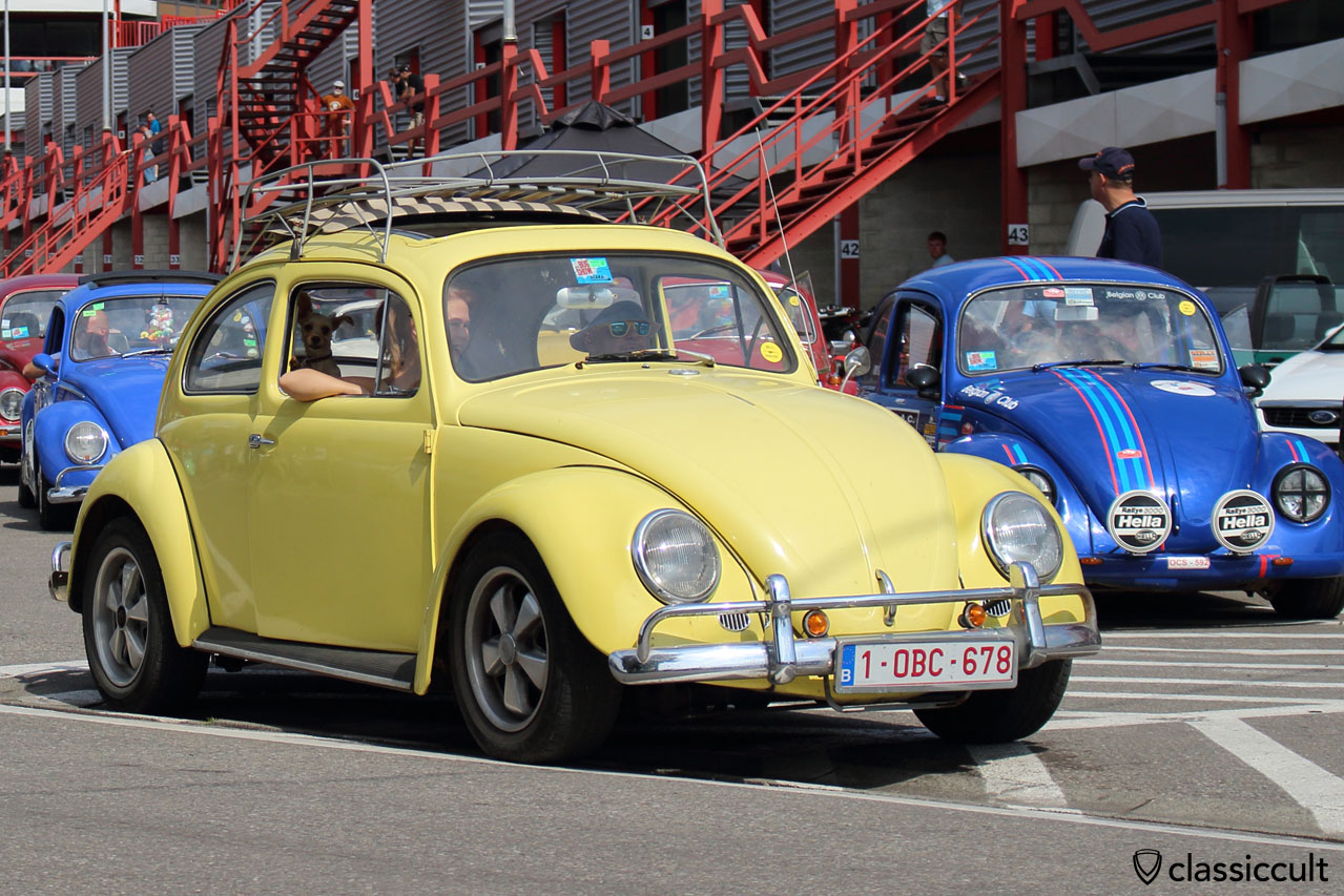 1967 Ragtop VW Beetle with cute dog inside