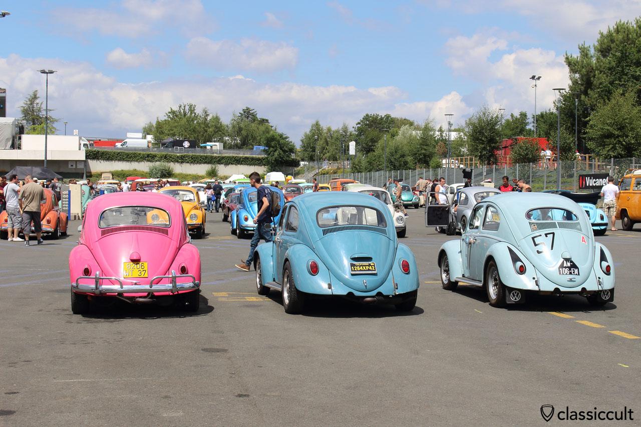VW Beetles rear
