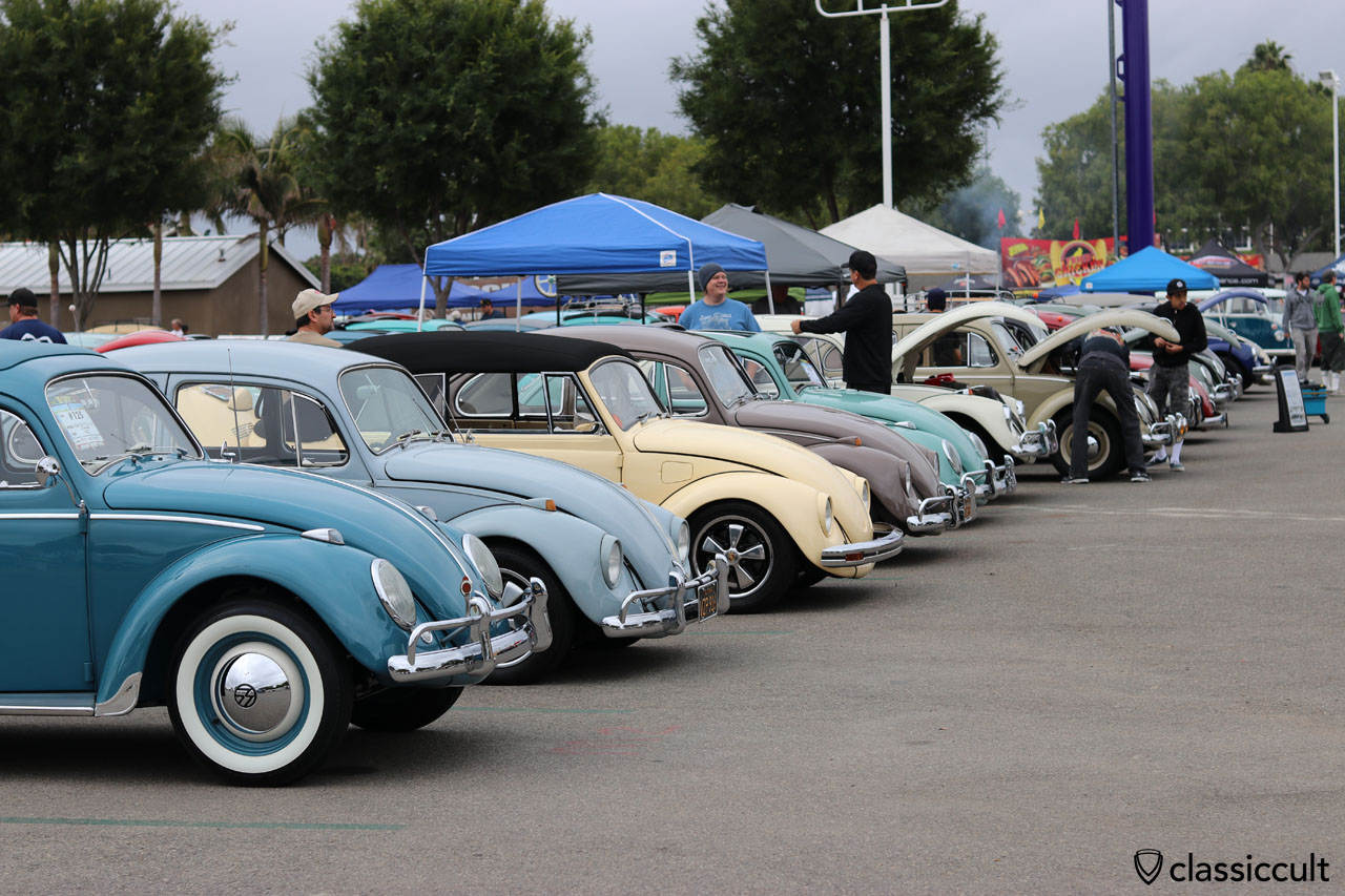 VW Beetles line up, The Classic Show California