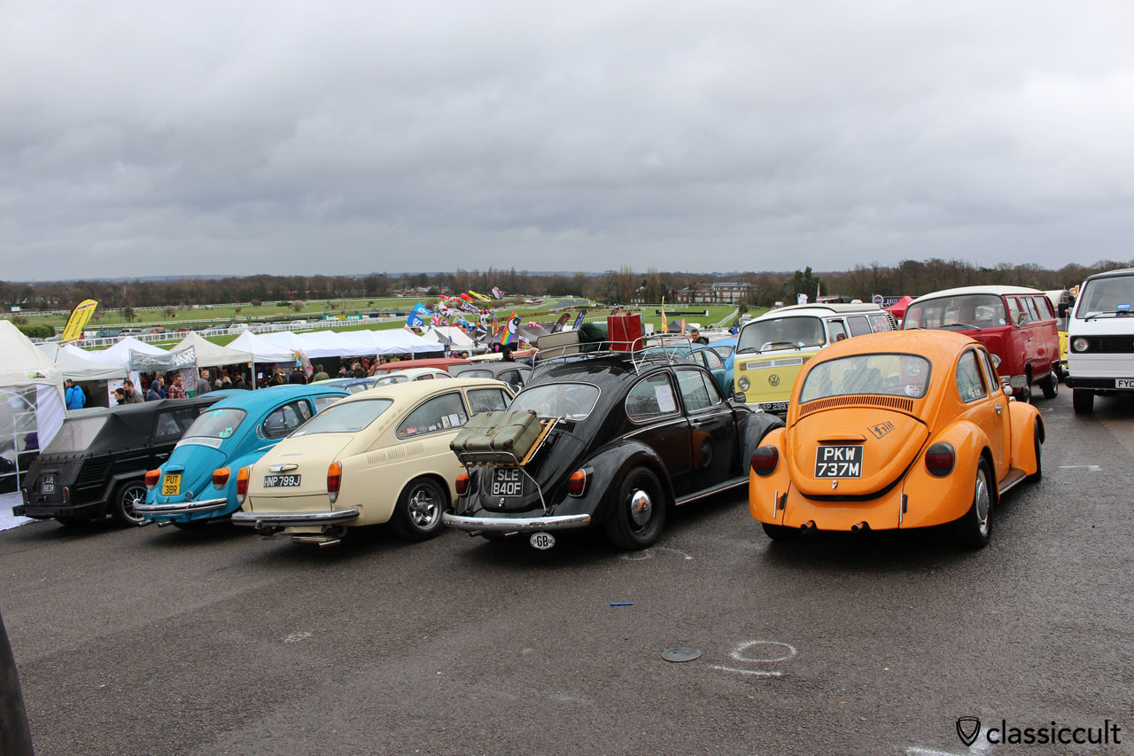 air cooled VWs, rear view