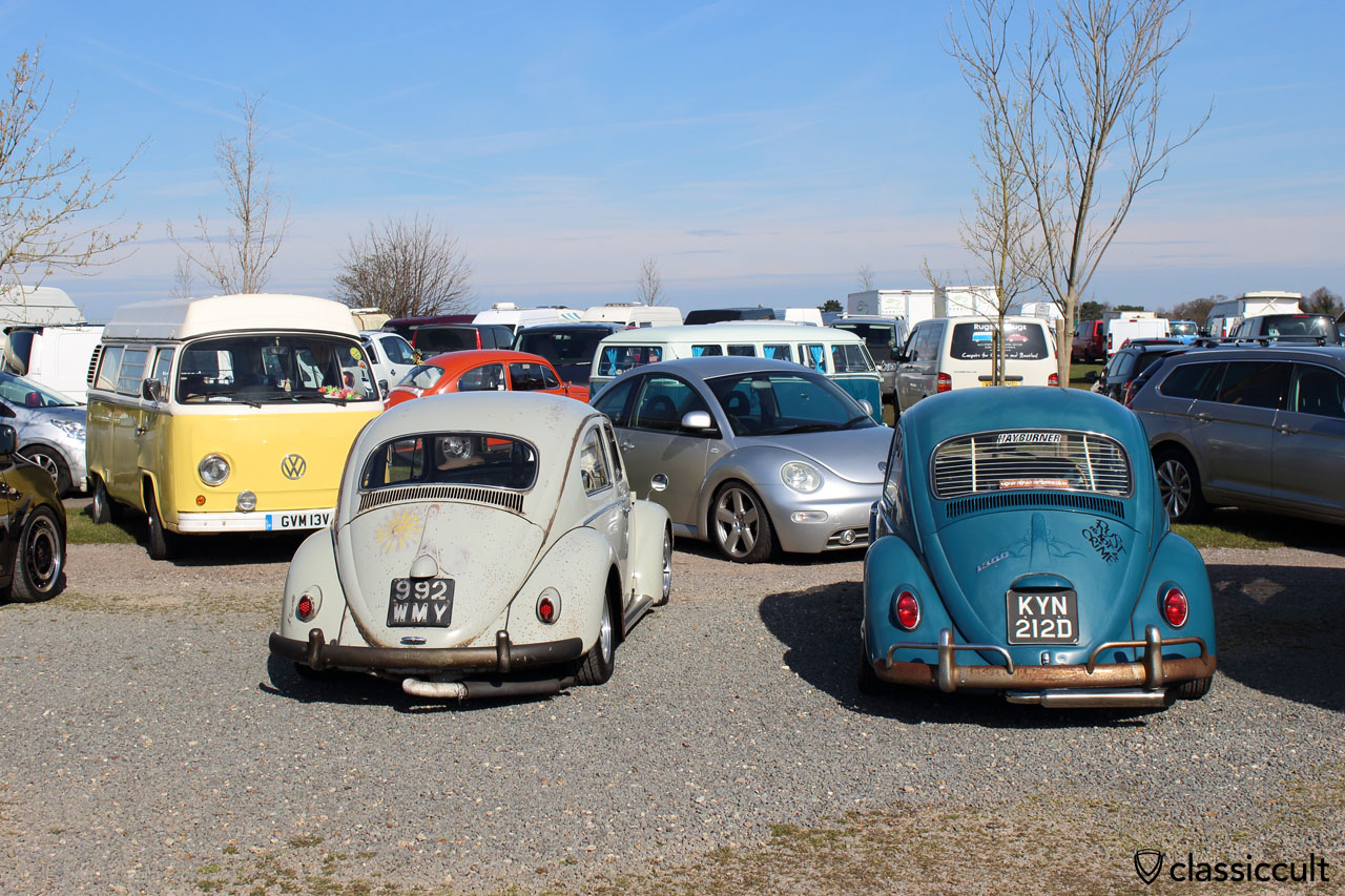 VW Beetles at Volksworld car park 2016