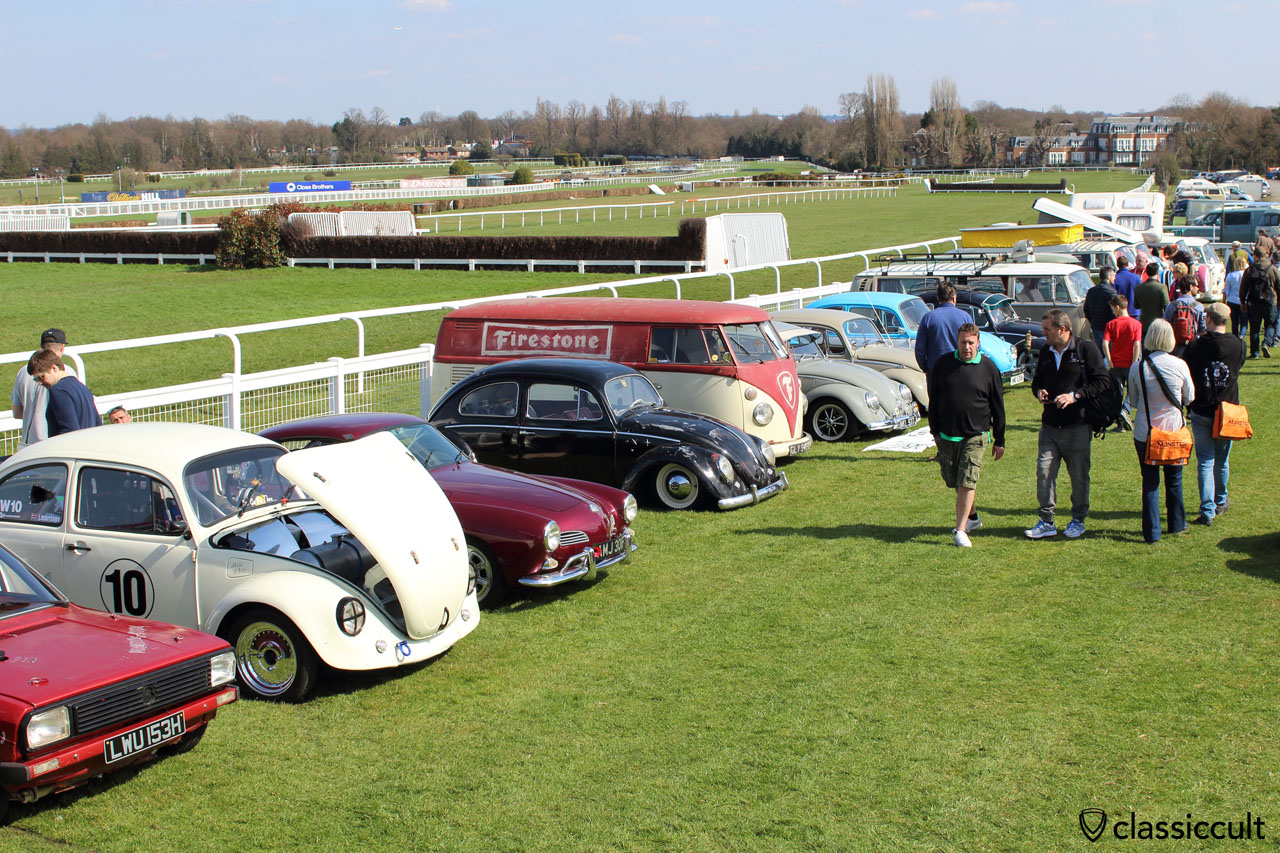 Classic VWs at Sandown Park Racecourse