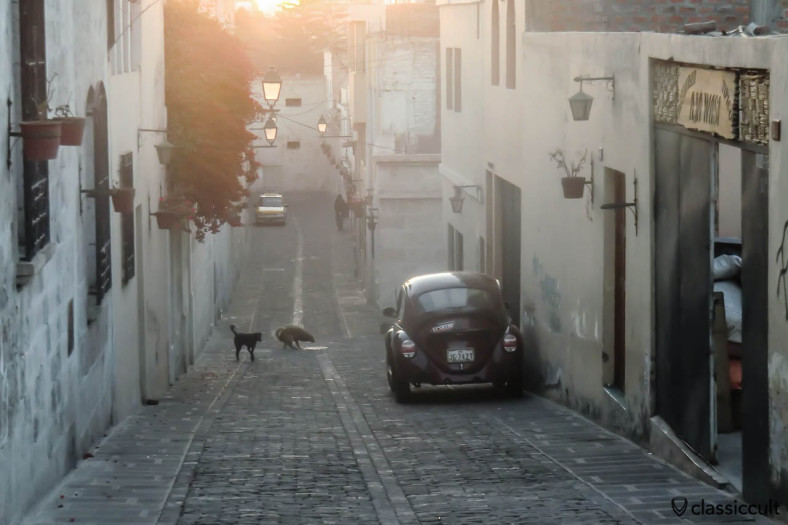 VW Beetle in a side road of Jerusalem Street, Arequipa,  Peru, May 8, 2013. The dog.....on the historic pavement :-)