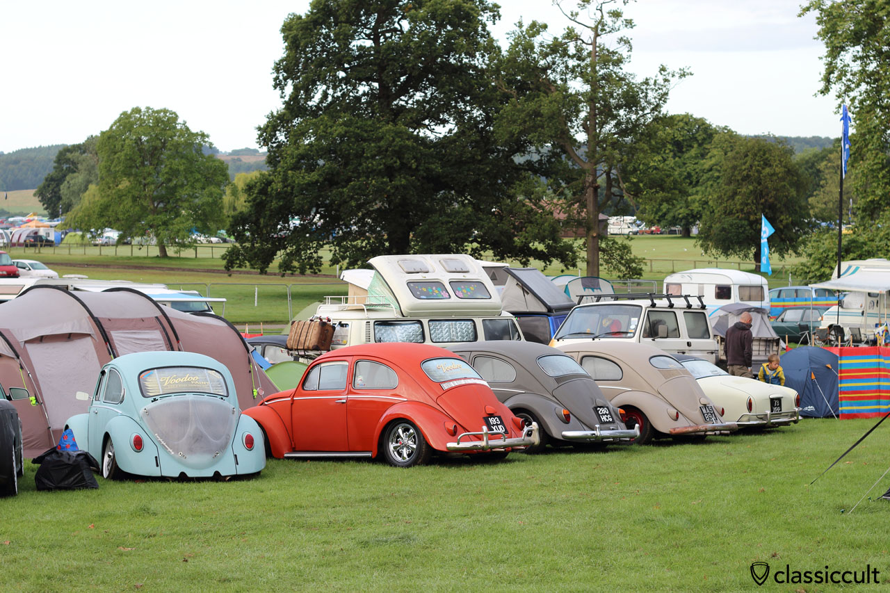 Clique53 Beetles at campground, VW Festival 2015, 7:15 a.m.