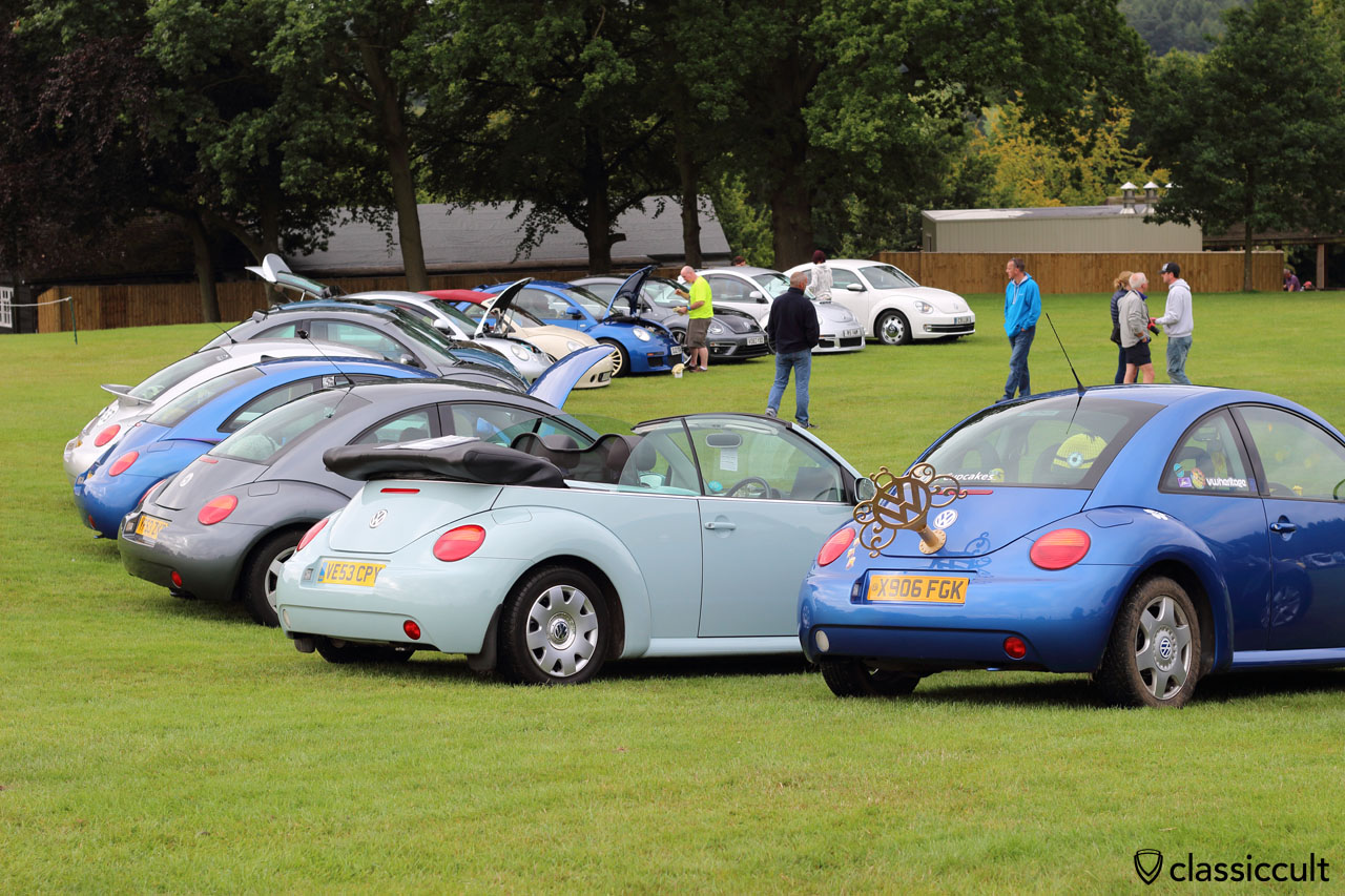 New Beetles at VW Festival Leeds 2015