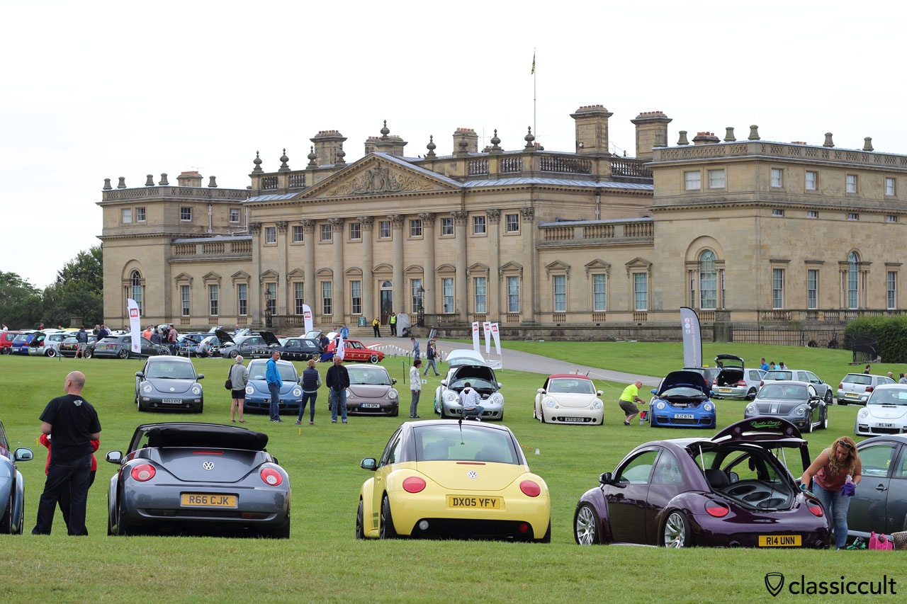 New Beetles and Harewood House