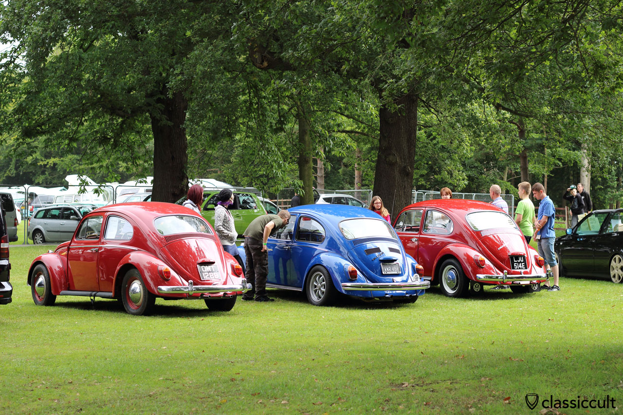 three VW Bugs