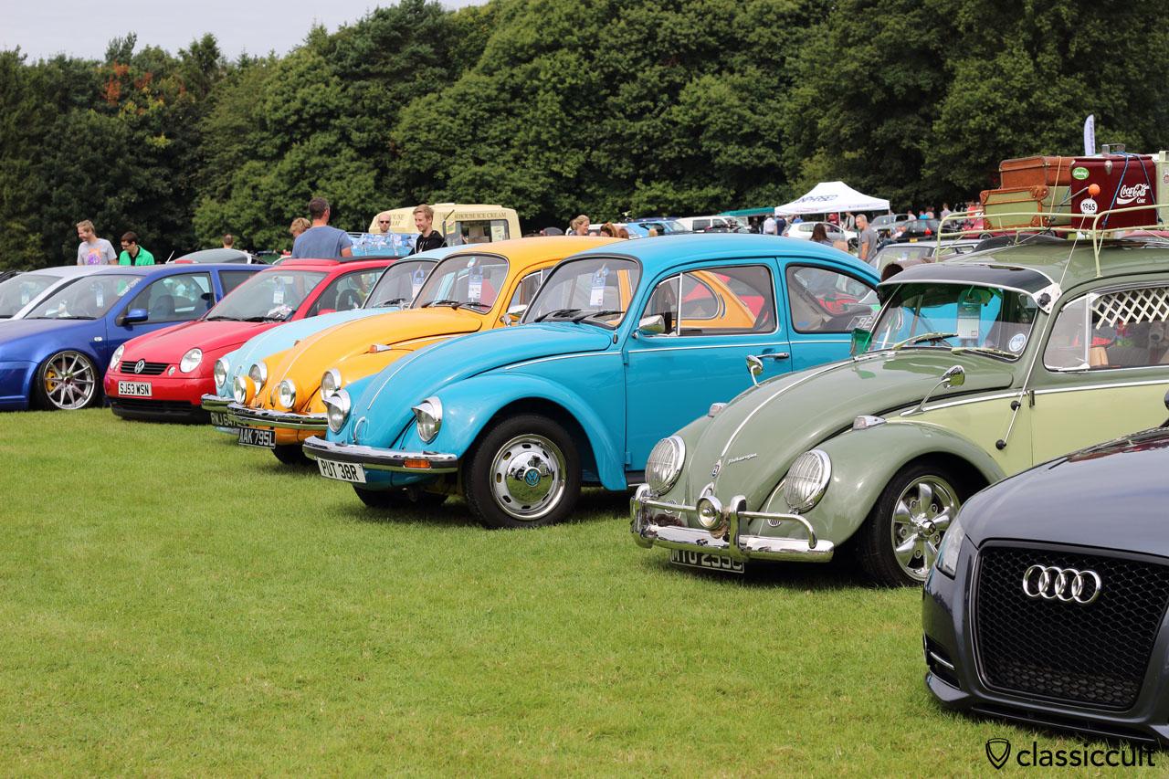 VW Festival, Leeds, 2015