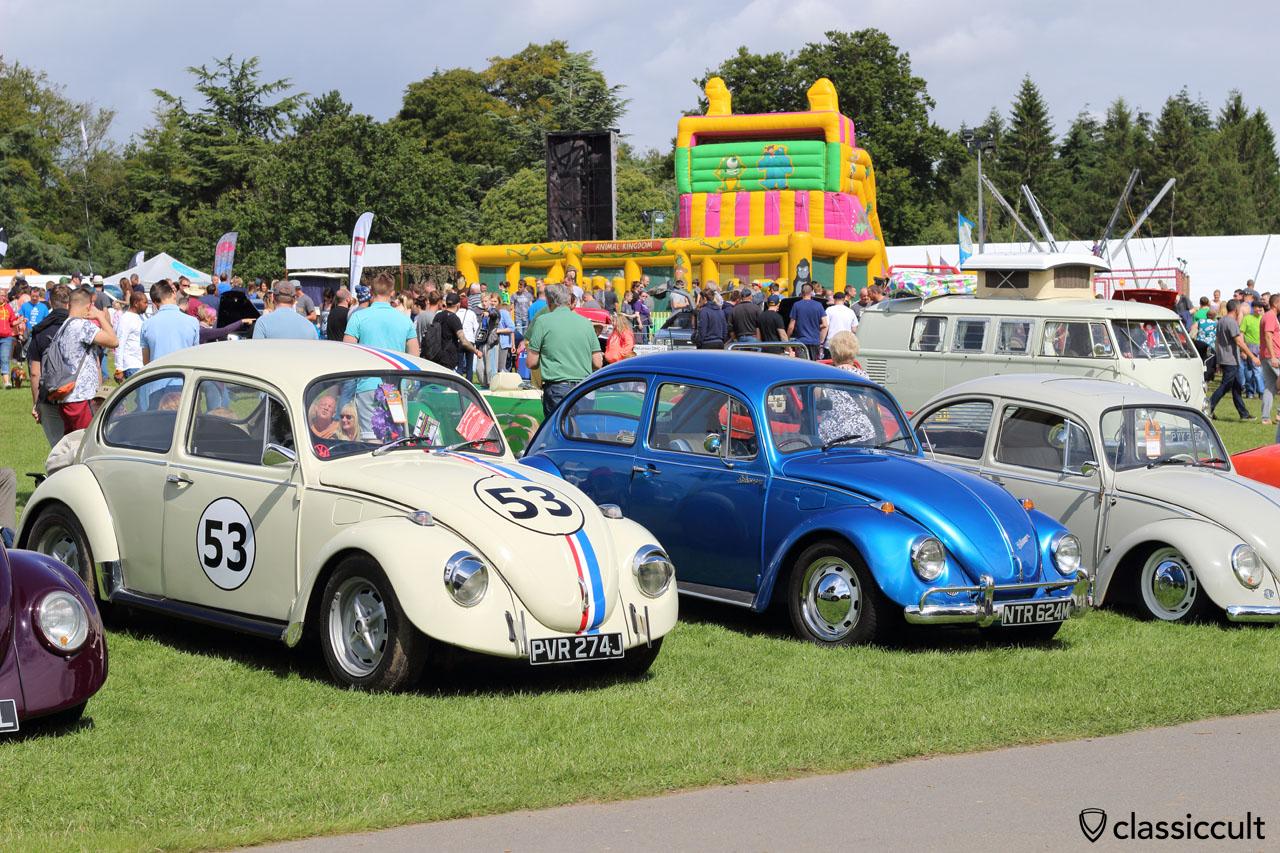 Herbie 53 California look
